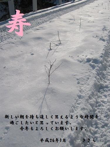 画像霊仙岳 003.jpg